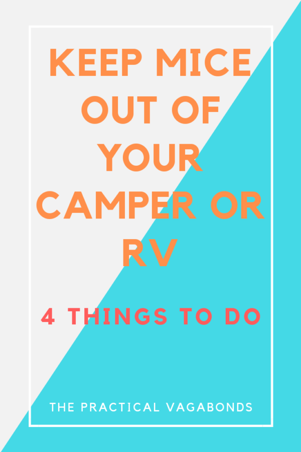 Keep Mice Out of Your RV with These 4 Tips!