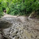 Prepare yourself for muddy trails full of horse excrement at Tayrona National Park.