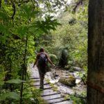 Crossing a bridge at Valle de Cocora