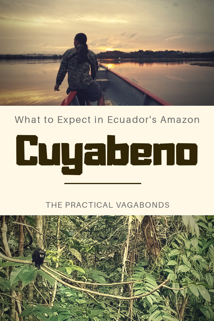 Want to visit Cuyabeno in Ecuador's Amazon? You should! Here is what to expect during your visit. #ecuadoramazon #cuyabeno #ecuadorrainforest