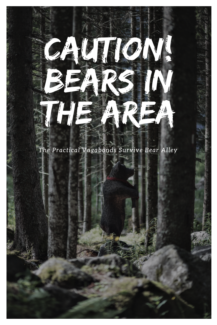 A tale about a close call with bears in Grand Teton National Park. #grandtetonnationalpark #tetons #nationalparks #bears