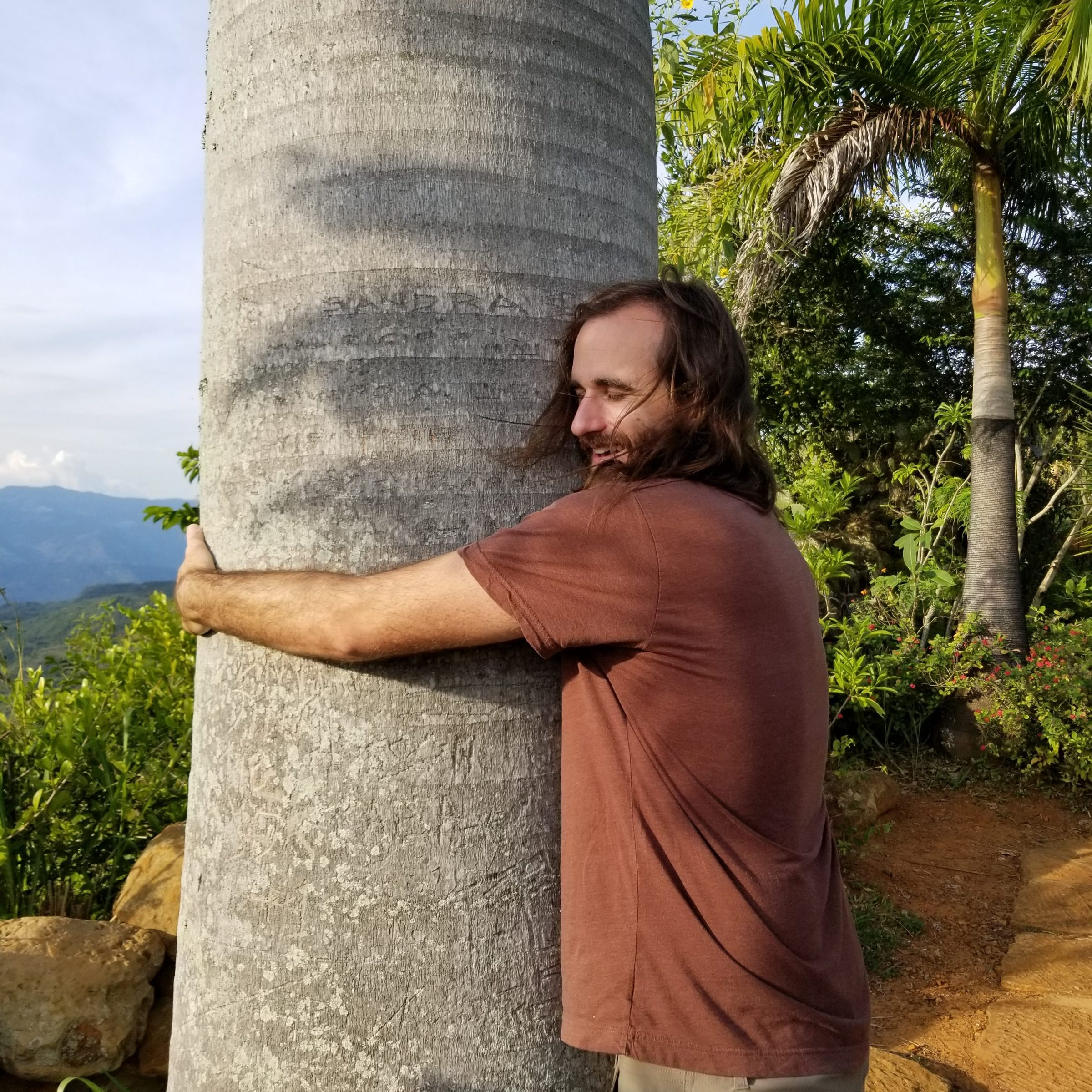 Jimmy Connell, palm tree hugger